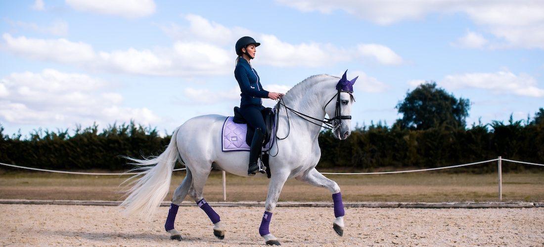 dressage_full_horse_lavender_2